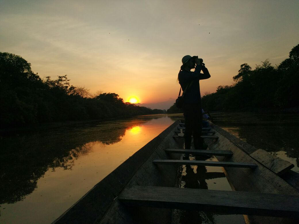 Colombia Wildlife Wild Llanos Tours and Safaris Sustainability Ecotourism Casanare Llanos Colombia